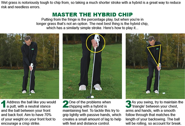 Hybrid chip